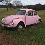 I found this at a junk yard outside of Houston, Missouri, thinking it might be my old bug. It isn't, but if it had been, I'd have bought it and had it towed home.